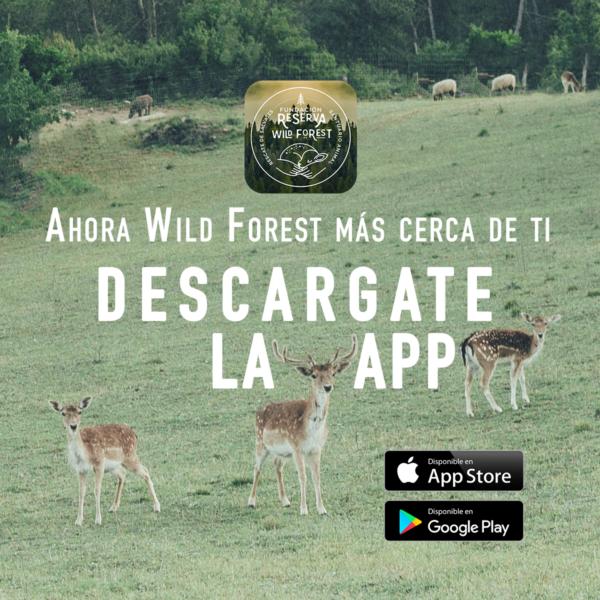 banner publicidad app reserva cuadrado